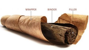 composition of cigar
